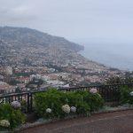 Madeire picos del Barcelos