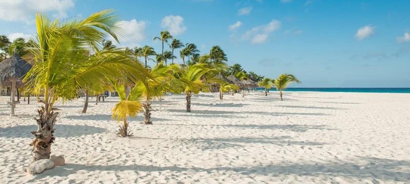 Escale à Aruba Manchebo Beach