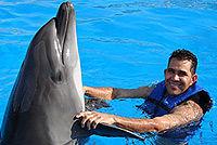 Excursion Costa Cabo San Lucas nager avec les dauphins