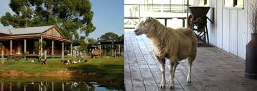 Escale Sydney Tobruk Sheep Station