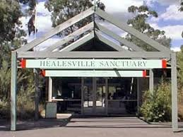 Healesville