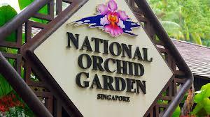 Singapour Jardin national des orchidées