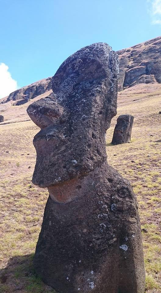 Croisière tour du monde Austral 2017 Balade au milieu des Moaï sur de l'île de Pâques 2