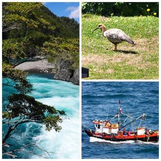Croisière tour du monde Austral 2017 Jean Luc et Claudine Escales à Puerto Chacabuco et Puerto Montt