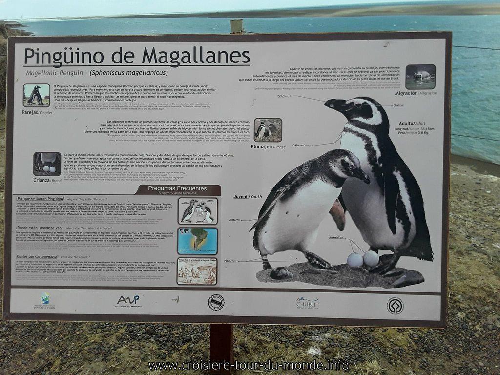 Escale à Puerto Madryn en Argentine