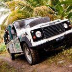 Escale a Antigua Fig Tree Drive