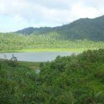 Escale à la Grenade parc national de Grand Etang
