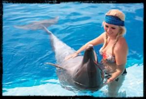 Excursion Costa Puerto Vallarta dolphin-swim-experience