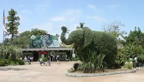 Escale à san diégo visite du zoo