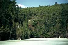 Escale Tauranga Nouvelle-zelande Blue Lake