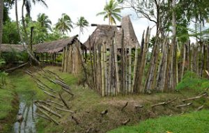 village Suva