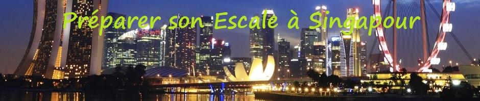 Préparer son escale à Singapour