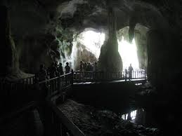 Cave bats Langkawi