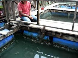 la ferme des pêcheurs Langkawi