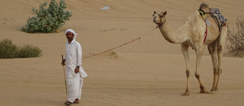 Safari en 4x4 dans les dunes