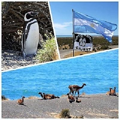 Croisière tour du monde Austral 2017 Claudine et Jean Luc escale à Puerto Madryn