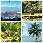 Jean-Luc Claudine et le Costa Luminosa 53 ème et dernier jour d'escale à Papeete (Tahiti) de cette croisière tour du monde Australe 2017