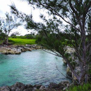 Réserve naturelle de l'île Cooper