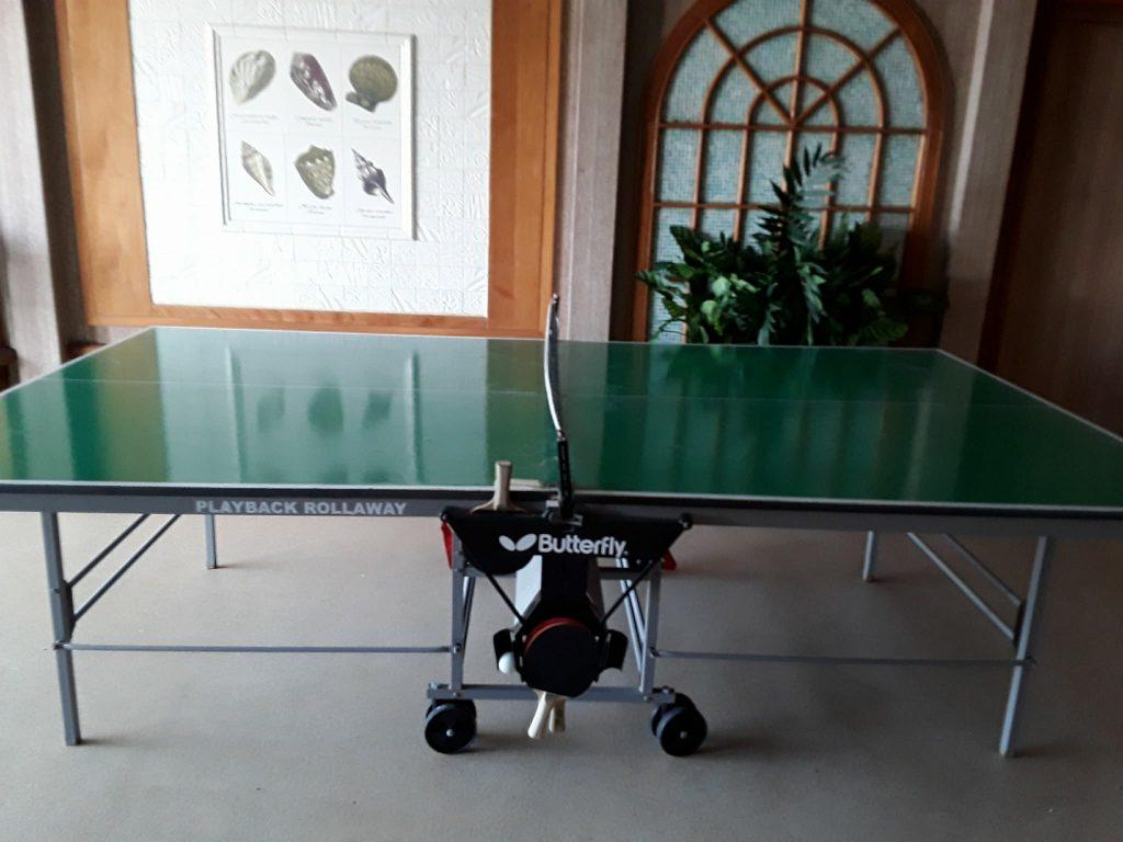 Table de ping-pong à disposition