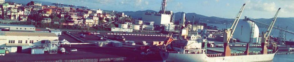 Vue sur le Port de Commerce Fort de France 2