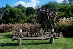 Jardín Botánico montevideo
