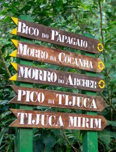 Tijuca National Park Rio de Janeiro