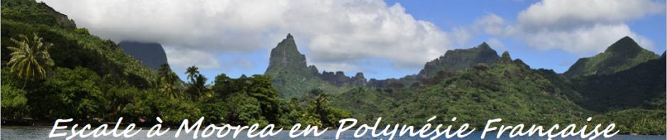 Escale à Moorea en Polynésie Française