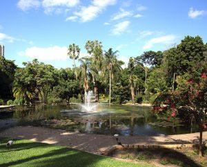 City Botanic Garden à Brisbane en Australie