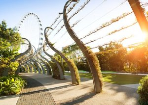 The Arbour à Brisbane en Australie