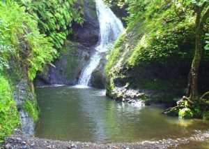 Wigmore's Waterfall Rarotonga Îles Cook