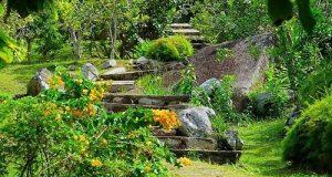 Croisière tour du monde Le Jardin Du Roi Spice Garden Mahé Seychelles