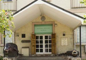 Croisière tour du monde Le musée national d'histoire naturelle Victoria Mahé aux Seychelles
