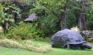 Croisière tour du monde National Botanic garden Victoria Mahé aux Seychelles