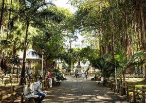 Croisière tour du monde Jardin de la Compagnie Port Louis île Maurice