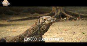 Escale 26 Croisière tour du monde à Komodo Island en Indonésie